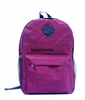 Two Tone Computer School Backpack with Pu Patch HY-18A1831