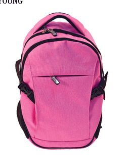 China Medium Two Tone School Computer Backpack HY-A012